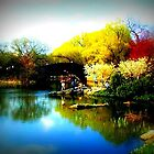 Pond at the Park by ShellyKay