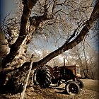 Out on The Farm - Tractor on a Farm by tc5953