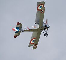 Battle of Britain Memorial Flight by Ian Middleton