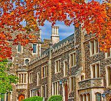 Princeton University by vadim19