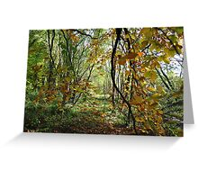 The colours of autumn Greeting Card