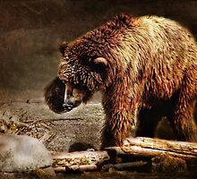 Grizz by Kay Kempton Raade