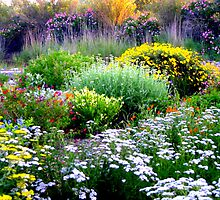 Beautiful Garden by Esperanza Gallego