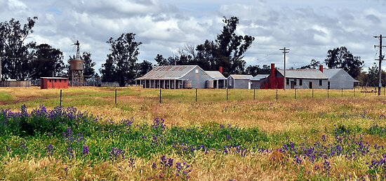 The Shearing Quarters by Terry Everson
