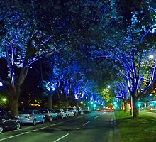 Melbourne Blues by TonyCrehan
