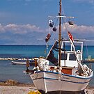 Greek Fishing Boat, Corfu by David Davies