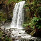 The Hopetoun Falls on the Aire River by Christine Smith