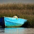 Cape Cod Eastham, Boat Meadow - Blue Boat by capecodart