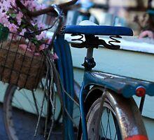 Kewl Bike by Sjkphotography