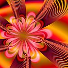 Flower Power by Belinda Osgood