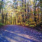 Grassflat, PA by Bernie Garland