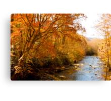 Creek! Canvas Print