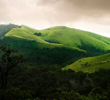 Rolling hills by Vikram Franklin