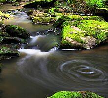 Swirling Water by Stephen Ruane