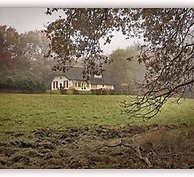 Dutch Cottage in morning mist by John44