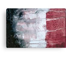 Shadow Flag Metal Print