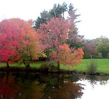 Loomis Chaffee Academy Grounds-Pond View by LisaO