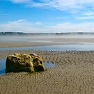 Mavillette Beach VII by David Davies