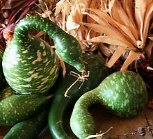 Goose or Gourd.....You  Decide by Geno Rugh