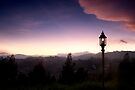 Light over Coonoor by Vikram Franklin