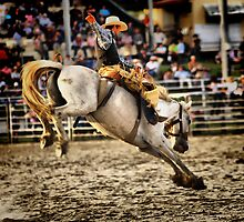 Bucking Bronc by sally williams