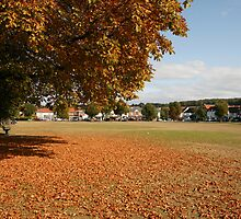 Buckinghamshire Village Green in Autumn by photogary1957