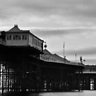 Brighton Pleasure Pier by NadineBurzler
