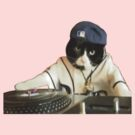 DJ KITTY by hrde2