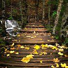 Plitvice lakes by Stankina