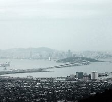 SF Bay from the Berkeley hills by CarynSandoval