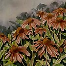 Cone Flowers by MegJay