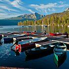 Mountain Lake Boat Dock by Jim Terry