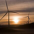 Whitelee Wind Farm by Gordon Hunt