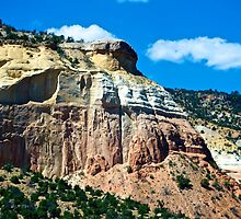 Attractive scenery in New Mexico by Ann Reece