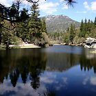 Water mirror - Silent Valley, CA by Aurora Vaz