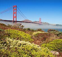 San Francisco Golden Gate Bridge by upthebanner