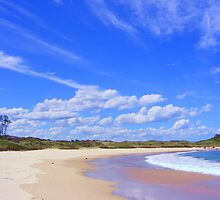 Beach Reflections - near Frasers Reef - NSW by Sandy MacLean