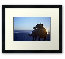 Shela at Sunset Framed Print