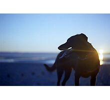 Shela at Sunset Photographic Print