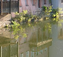 reflex in river Pegnitz by KSissy