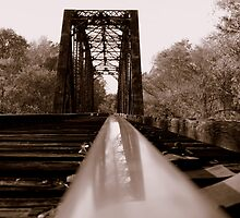 Railroad Trestle ,Cumnock NC by Dianna Tilley