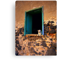 Puppy in the window Canvas Print