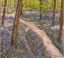 Bluebells - Frank's Wood by Poppy-Art