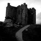 Carn Brea Castle by Mark Wilson