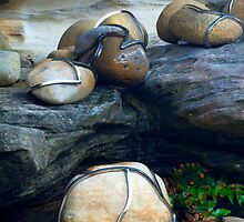 Chrome wrapped rocks by Antoine de Paauw