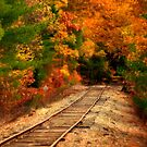 Traveling Through The Seasons by Monica M. Scanlan