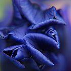 a blue tomorrow... by byzantinehalo