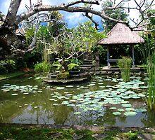 Exotic Experience - Ubud Village Bali by Aurora Vaz
