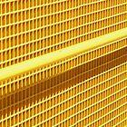Yellow by Ricky Pfeiffer