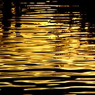 Liquid Gold - Water Loving the Sunset by Henry Murray